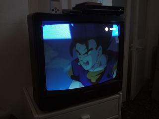 Ibiza TV (Dragon Ball).jpg
