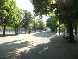 Paris Jardin du Luxembourg 2.jpg